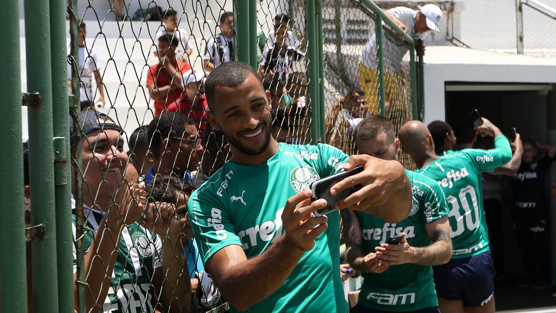 Fortaleza X Palmeiras Informacoes Curiosidades E Historico Do Confronto Palmeiras