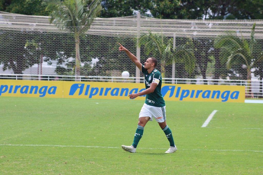 FGF/Divulgação_Papagaio marcou o gol palmeirense no tempo regulamentar