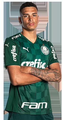 Henri Marinho dos Santos