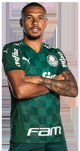 Wesley Ribeiro Silva